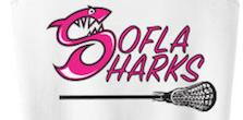 SoFla Sharks